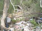 Border Trash (3/7)