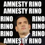 amnesty-rino