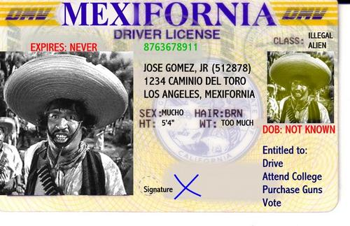 Should Illegal Immigrants Be Allowed To Get Driver's Licenses?